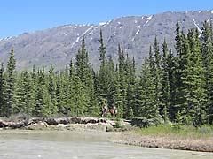 Watson River with Caribou Mountain in background